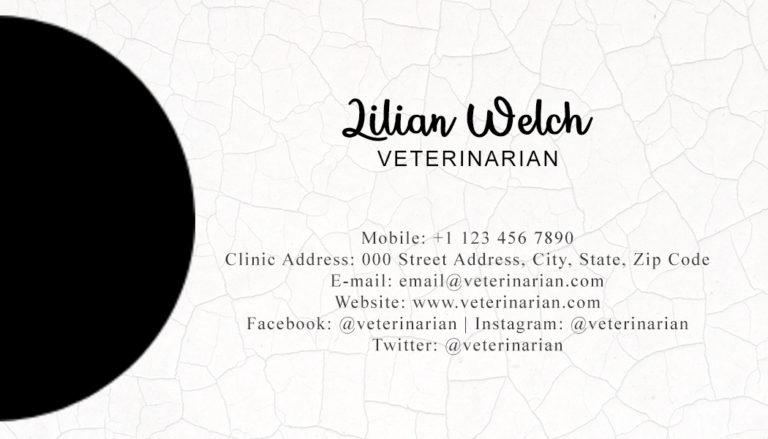 Veterinary Back 1