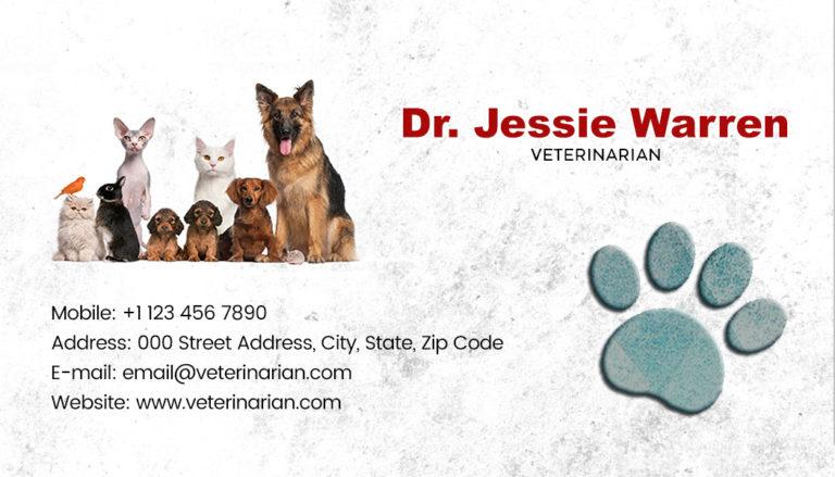 Veterinary Back 5